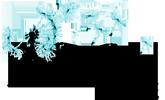 Allergies et intolérances, une approche énergétique Logo